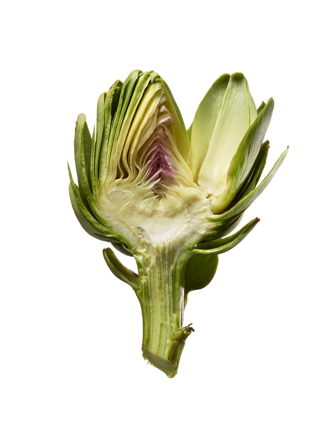 Glasshouse Assignment - Kang Kim - Food Photography - Artichoke