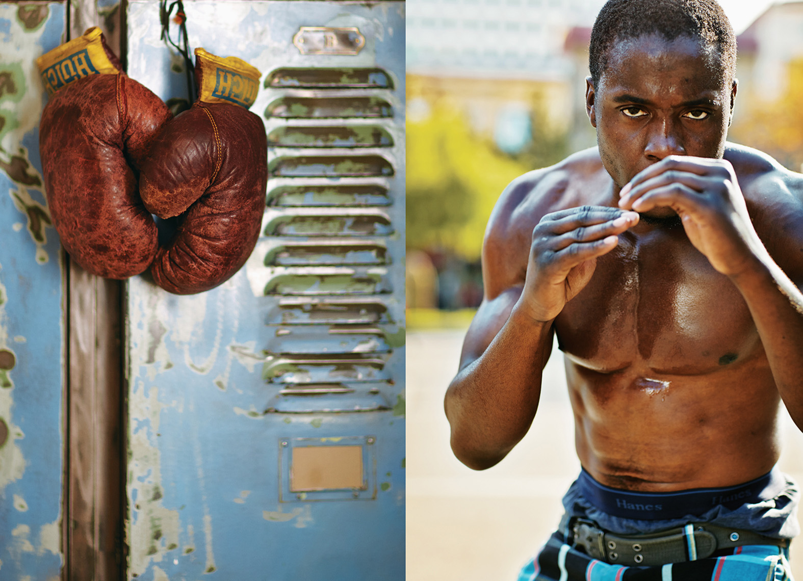 Boxing gloves and boxer_APF