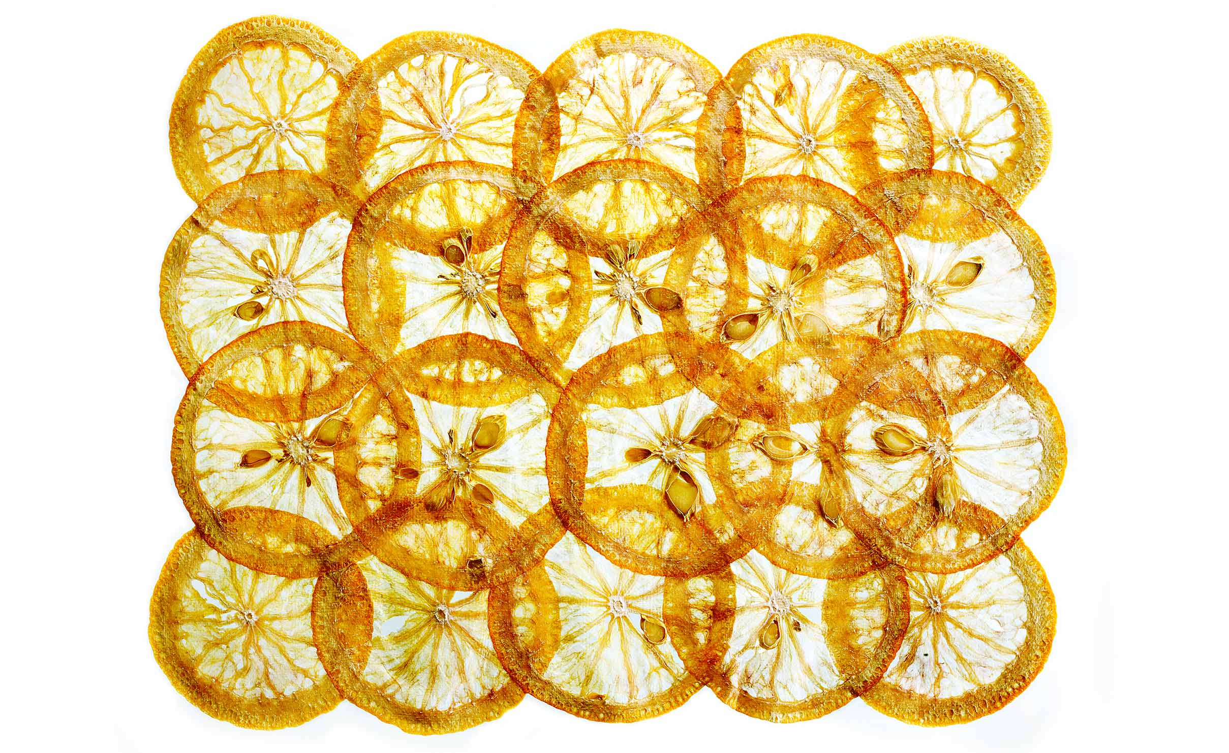 Glasshouse Assignment - David Bishop - Elements Series - Dried Orange Slices