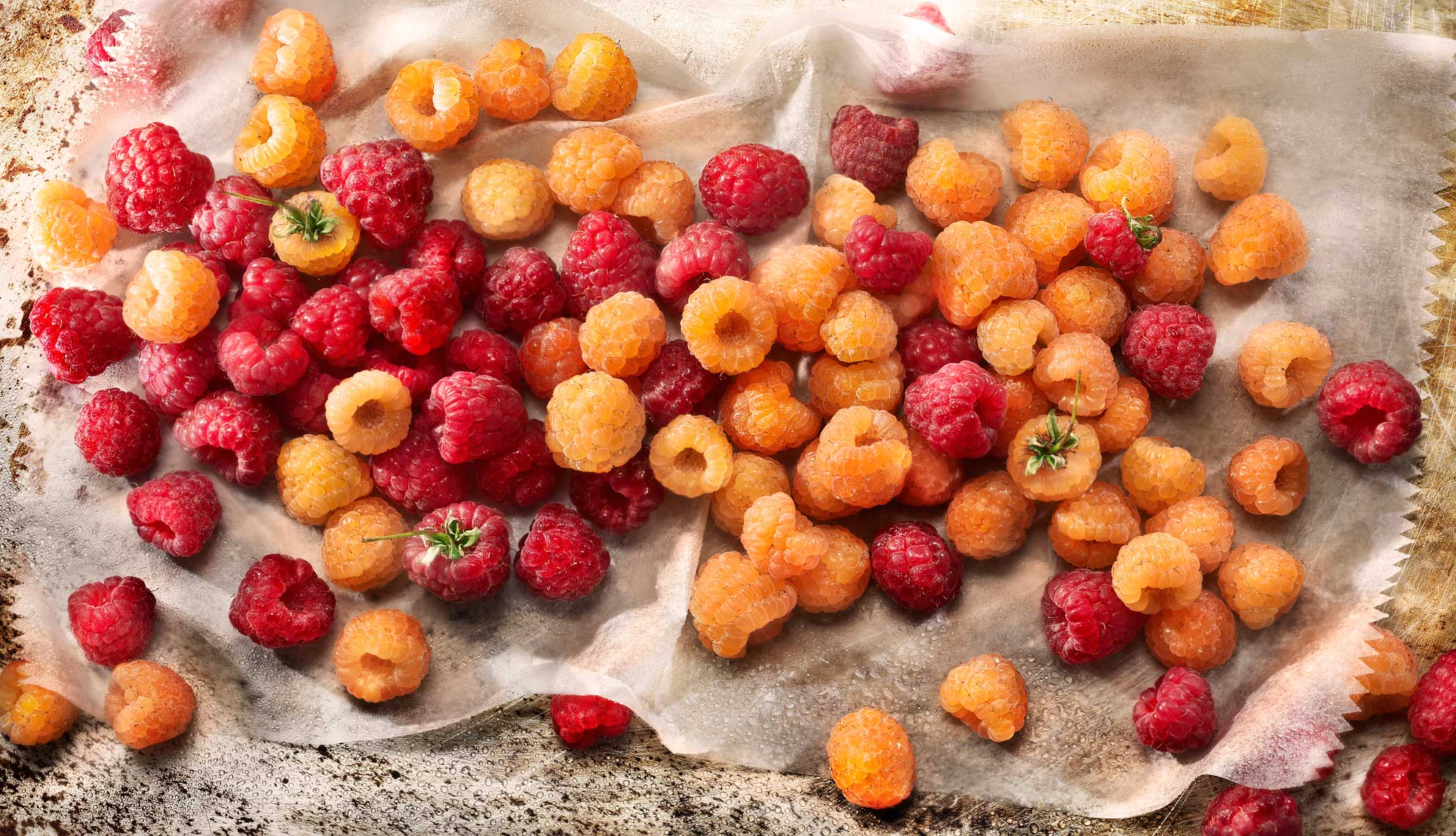 Glasshouse Assignment - David Bishop - Food Photography - Raspberries
